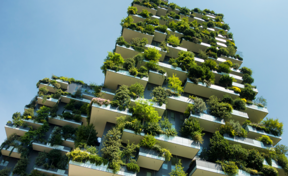 building with living green walls